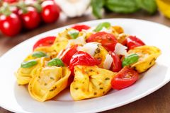 Tortellinis Royalty Free Stock Images