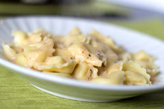 Tortellinis parma rosa. Focus on the center stock photography