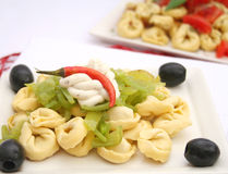 Tortellinis Royalty Free Stock Photography