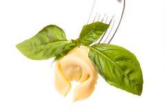 Tortellino And Basil On White royalty free stock image