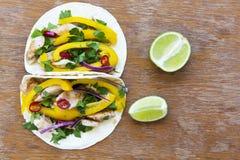 Tortilhas de milho saborosos com legumes frescos, suficiência grelhada da galinha Fotos de Stock