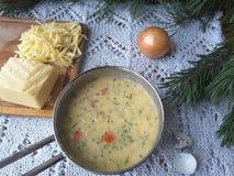 Tortilla игл сосны варя с луком стоковое изображение