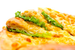 Tortilla bourrée de la viande Photo libre de droits