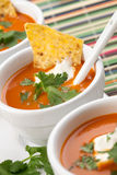Tortilla-Chipotle Soup Royalty Free Stock Images