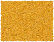 Tortilla chips background Royalty Free Stock Image
