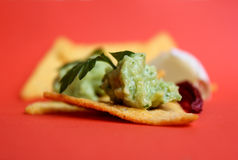 Tortilla chips with mexican guacamole Royalty Free Stock Image