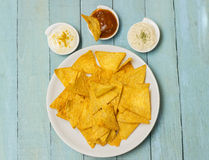Tortilla Chips With Seasonongs Stock Photo