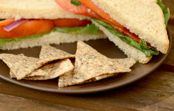 Tortilla chips and vegan sandwich Royalty Free Stock Photography