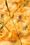 Tortilla closeup Royalty Free Stock Photo