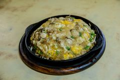 Tortilla de la ostra en cacerola caliente Tortilla de la ostra servida en la cacerola caliente, comida china en Tailandia fotografía de archivo libre de regalías