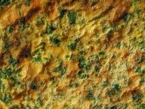 Tortilla del cilantro del perejil Fotografía de archivo