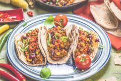 Tortilla och bemanna med kött och grönsaker royaltyfria bilder