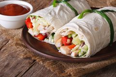 Tortilla roll with chicken and vegetables with sauce. horizontal Stock Photo