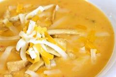 Tortilla soup. Close up of a warm bowl of spicy tortilla soup Royalty Free Stock Photos