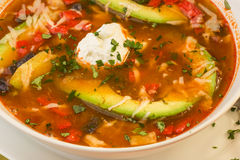 Tortilla Soup closeup Royalty Free Stock Image