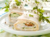 Tortilla wrap Royalty Free Stock Image
