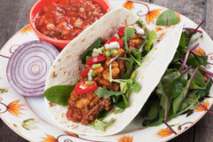 Tortilla wrap with chili, beans and ground beef Stock Image
