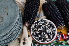 Tortillas azules, blauer Mais, mexikanische Nahrungsmitteltraditionelle Nahrung in Mexiko stockfotos