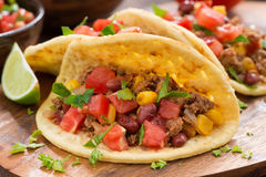 Tortillas with chili con carne and tomato salsa Stock Photography