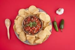 Tortillaspaanders en salsa. royalty-vrije stock afbeelding
