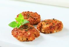 Tortini di verdure Fotografie Stock