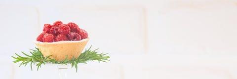 Tortino del lampone con la decorazione dei rosmarini su fondo bianco Fotografia Stock Libera da Diritti