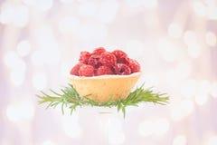 Tortino del lampone con la decorazione dei rosmarini su fondo bianco w Fotografia Stock Libera da Diritti