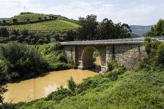 "Torto flod†""bron och Muddy Water royaltyfri bild"