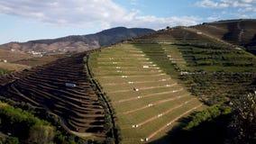 Torto River Valley