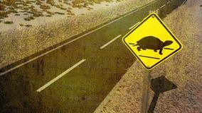 Tortoise που διασχίζει το σημάδι παραγωγής στην έρημο Στοκ Εικόνες
