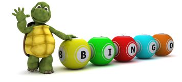 Tortoise with bingo balls Stock Photo