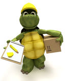 Tortoise builder receiving a parcel Stock Images