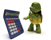 Tortoise with a calculator Stock Images