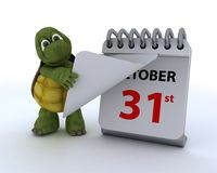 Tortoise with a calendar Royalty Free Stock Image