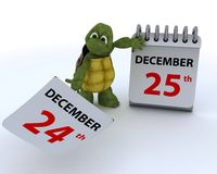 Tortoise with a calendar Stock Image