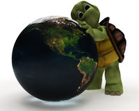 Tortoise Caricature Hugging a Globe Royalty Free Stock Images