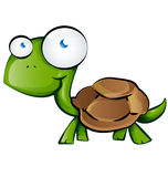 Tortoise cartoon Royalty Free Stock Photo
