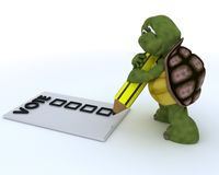 Tortoise casting a vote in election Royalty Free Stock Images