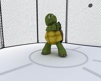 Tortoise competing in hammer throw Stock Photos