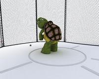 Tortoise competing in hammer throw. 3D render of a tortoise competing in hammer tow Stock Images