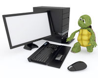 Tortoise with a computer Royalty Free Stock Image