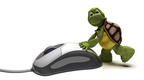 Tortoise with a computer mouse Royalty Free Stock Photo