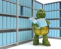 Tortoise con i libri in libreria royalty illustrazione gratis