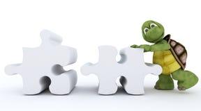 Tortoise con il puzzle di puzzle Fotografie Stock Libere da Diritti