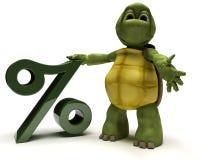 Tortoise con il simbolo di percentuale Immagini Stock Libere da Diritti