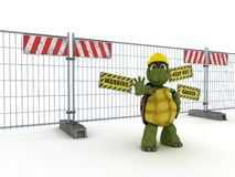 Tortoise with construction barrier fence Stock Images