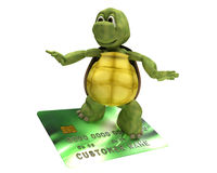 Tortoise with a credit card Stock Images