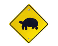 Tortoise Crossing Royalty Free Stock Photo