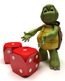 Tortoise with dice Stock Image