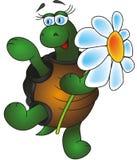 Tortoise divertente Royalty Illustrazione gratis